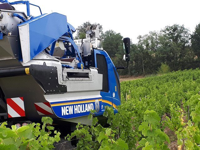 New Holland Combi Grape Sorting System