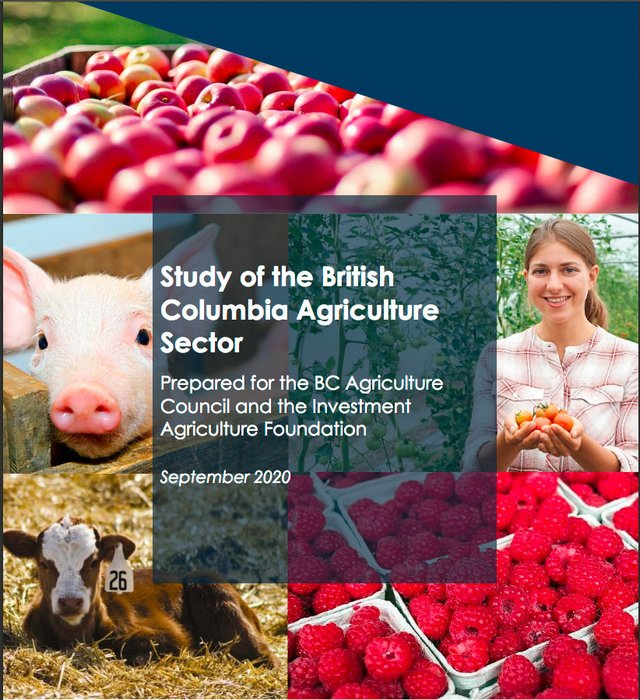 Study of BC Ag Sector